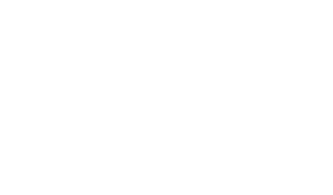 SkillStorm writing by Abask Marketing
