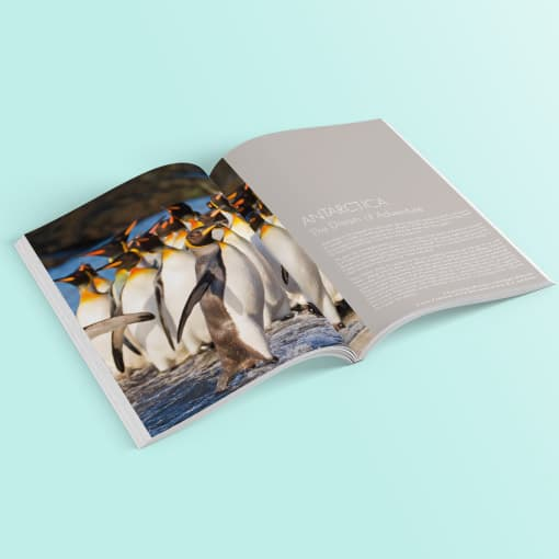 cruisebrochure-antarticafrontpage